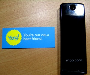 Moo Mini Cards Carrying Case