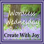 Wordless Wednesday at CWJ