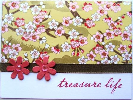 Treasure Life Card