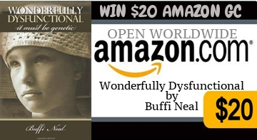 Wonderfully Dysfunctional Giveaway Banner
