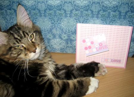 Love Card w Magellan