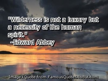 Wilderness Quote