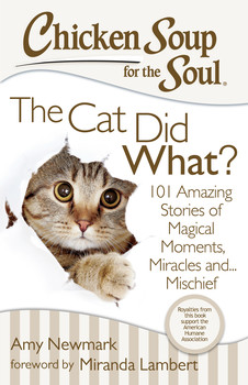 Chicken Soup For The Soul Giveaway – The Cat Did What?