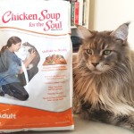 Chicken-Soup-For-The-Soul-Cat-Food-Create-With-Joy.Com-Tsunnami-1