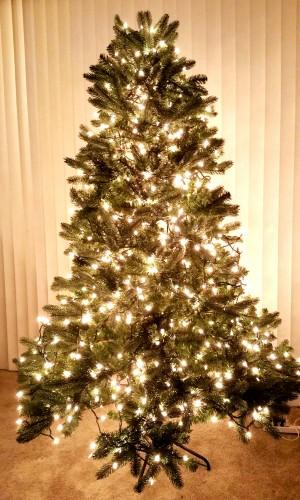 The-Hope-Tree-Create-With-Joy.Com-5