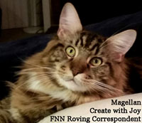 Create With Joy – Feline News Network Correspondent