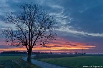 Jarek-Daybreak