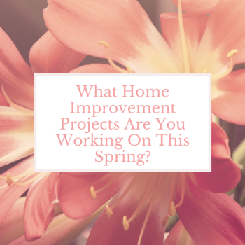 Home Improvement Projects Spring
