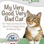 Chicken Soup For The Soul - My Very Good Very Bad Cat