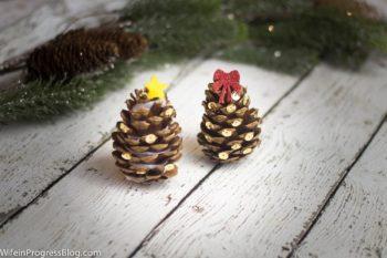 mini-pine-cone-trees