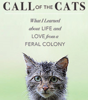 Call Of The Cats Giveaway