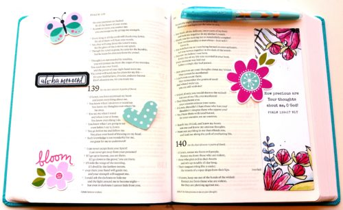 NLT Reflections Bible L with Illustrated Faith Products