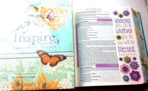 Inspire Bible - Deuteronomy L