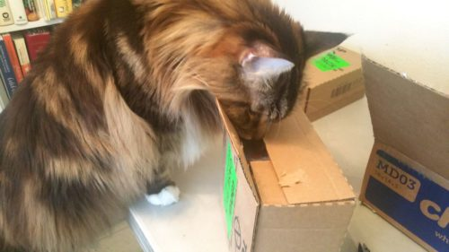 Magellan Inspects The Boxes