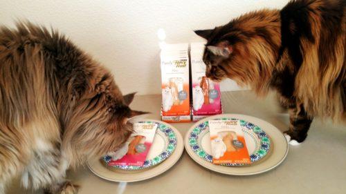 Fancy-Feast-Filet-Cats-Create-With-Joy.com