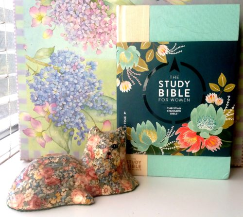 The-Study-Bible-For-Women-Create-With-Joy.com