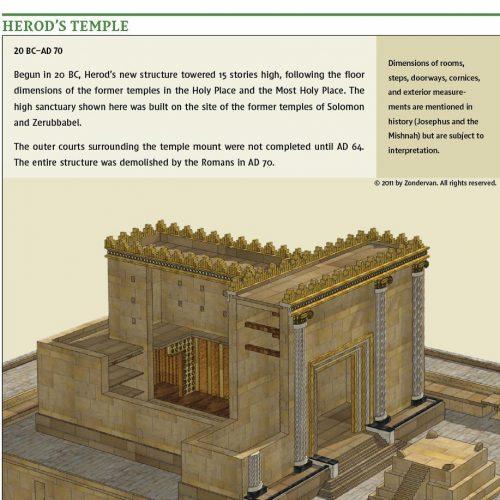 NIV Biblical Theology Study Bible - Graphics