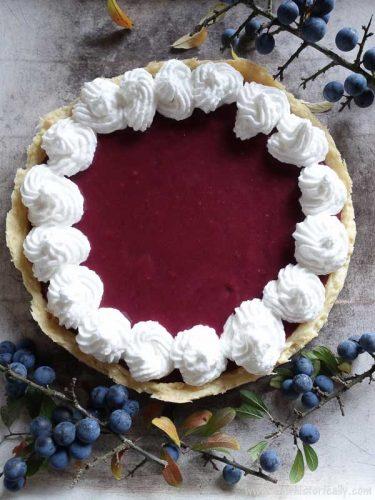 Sloe-Berry-Meringue-Pie-Wild-Foraging-Recipe